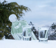 Liquor in the snow. Liquor with two glasses in the snow Royalty Free Stock Photo
