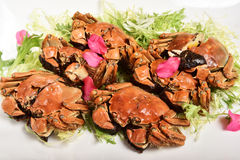 Liquor-Soaked crabs Stock Images