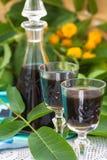 Liquore dalle giovani noci verdi fotografia stock