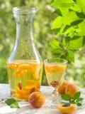 Liquore della frutta Fotografia Stock Libera da Diritti