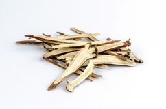 Liquorice, Licorice (Glycyrrhiza glabra) Stock Photography