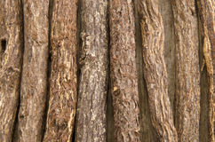 Liquorice root lying on a wooden surface Stock Image