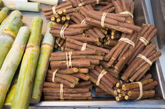 Liquorice and sugar cane Stock Photos