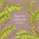 Liquorise vector frame. Liquorise branches vector frame on color background Stock Photography