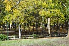 Liria, park van San Vicente Royalty-vrije Stock Foto's