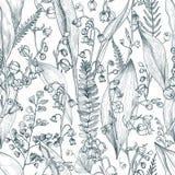 Lirio de los valles con el modelo inconsútil del esquema del helecho Dé los brotes, las hojas y la textura exhaustos de los tronc Imágenes de archivo libres de regalías