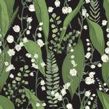 Lirio de los valles con el modelo inconsútil del helecho Textura dibujada mano con las flores, los brotes, las hojas y los tronco Fotos de archivo libres de regalías