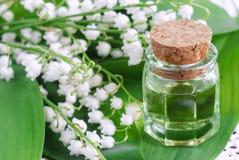 Lirio de los valles del aceite del perfume Imagen de archivo libre de regalías