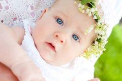 Lirio de los valles del bebé y de la flor Fotos de archivo
