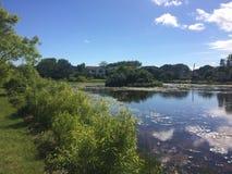 Lirio, lago y casa de agua foto de archivo libre de regalías