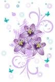 Lirio púrpura Imágenes de archivo libres de regalías