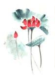 Lirio pintado a mano decorativo magnífico distinguido tradicional chino del tinta-agua ilustración del vector