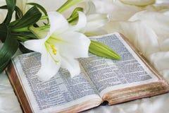 Lirio y biblia de pascua Foto de archivo