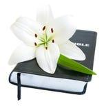 Lirio y biblia de pascua Fotos de archivo libres de regalías