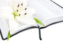 Lirio y biblia de pascua Imagen de archivo libre de regalías