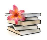 Lis et livre noir images stock