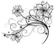 Lis, fleurs Photographie stock