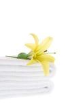 Lis jaune sur l'essuie-main blanc image libre de droits