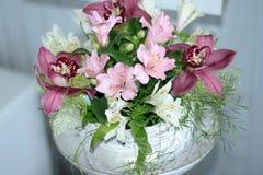 Lis péruvien, lis des Inca, Alstroemeria avec les fleurs rose-clair photo stock
