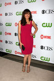 Lis Vassey CBS TCA July 09 Party Royalty Free Stock Photography