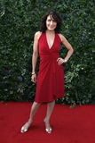 Lisa Edelstein Royalty Free Stock Photography