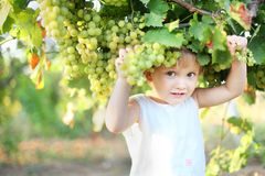 Lisa and grape. Baby girl holding green grapes in hand Stock Images