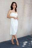 Lisa LoCicero Royalty Free Stock Photography