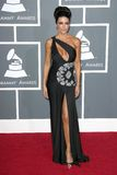 Lisa Rinna. At the 51st Annual GRAMMY Awards. Staples Center, Los Angeles, CA. 02-08-09 Royalty Free Stock Images