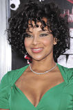 "LisaRaye McCoy-Misick. At the Los Angeles premiere of ""Street Kings"" at Grauman's Chinese Theatre, Hollywood. April 3, 2008  Los Angeles, CA Picture: Paul Smith Royalty Free Stock Image"