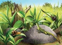 Lisard狩猎飞行蜗牛,绿色新鲜的草,日志 免版税库存图片