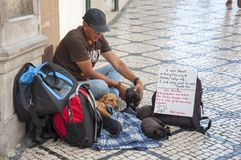 Lisbon city beggar. LISBON, PORTUGAL - 05.21.2017: urban city street beggar with dogs Royalty Free Stock Images