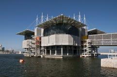 Lisbon Oceanarium Stock Photos