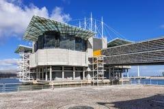 lisbon oceanarium Royaltyfri Foto