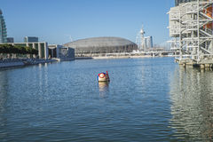 Lisbon Oceanarium, mascot Stock Image