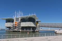 Lisbon oceanarium, Parque das Nacoes, expo Zdjęcie Royalty Free