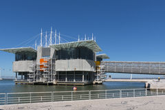 Lisbon Oceanarium, Parque das Nacoes, Expo. Royalty Free Stock Photo