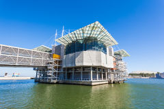The Lisbon Oceanarium Stock Photos