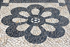 Lisbon Pavement Blossom Royalty Free Stock Photos