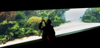 22-02-2018, Lisbon, Portugal, Oceanario de Lisboa: people visiting the temporary exibition of Takashi Amano for Oceanario de. Lisboa, Underwater Forests stock photo