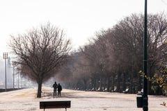 LISBON PORTUGALIA, Luty, - 02, 2011: Park's imię dać na cześć Edward VII Zjednoczone Królestwo Obrazy Royalty Free