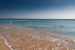 LISBON PORTUGALIA, Luty, - 01, 2011: Sesimbra plaża w Setubal Fotografia Stock
