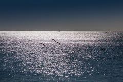 LISBON PORTUGALIA, Luty, - 01, 2011: Sesimbra plaża w Setubal Zdjęcie Royalty Free