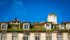 Lisbon roof Royalty Free Stock Image