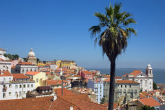 Lisbon and the Tejo river. View of Alfama and the river - Lisbon Royalty Free Stock Photography