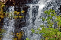 Lisbon waterfall, South Africa Royalty Free Stock Images