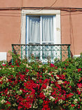 Lisbon window balcony Royalty Free Stock Photo
