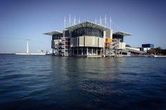 Lisbona Oceanarium Immagine Stock Libera da Diritti