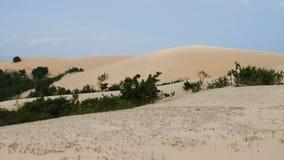 Lisci lo scivolamento del colpo delle dune di sabbia bianche in Muine, Vietnam video d archivio