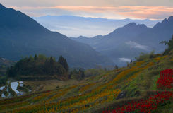 Lishui scenery. Asia China Zhejiang Lishui Scenery stock photography
