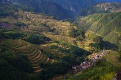 Lishui terrace scenery. Asia China Zhejiang Lishui terrace Scenery stock images